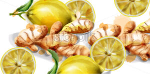 Lemon and ginger watercolor Vector background. fresh organic products banner - starpik