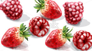 Raspberry and strawberry Vector watercolor. Juicy banner summer poster - starpik