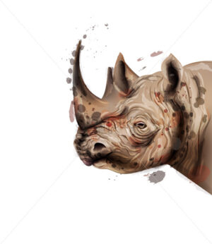 Rhino Vector watercolor. Wildlife animal illustration on white background - starpik