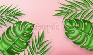 Tropic palm leaves Vector realistic background. Exotic summer card. Green fresh decor - starpik