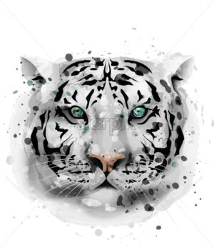 White Tiger vector watercolor. Wildlife animal front view illustration - starpik