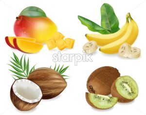 Mango, Coconut, kiwi and banana Vector realistic set collection fruits isolated on white - starpik