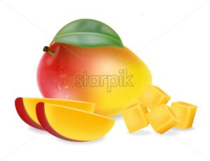 Mango fruit and slices isolated Vector realistic. Detailed elements design. 3d illustration - starpik