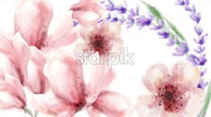 Pink delicate flowers and lavender Vector watercolor background. Spring summer texture - starpik
