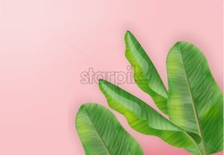 Tropic palm leaves Vector realistic. summer background template card - starpik
