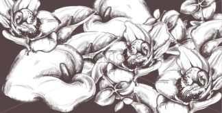 Vintage pattern calla flowers and orchids line art Vector. Old effect backgrounds - starpik