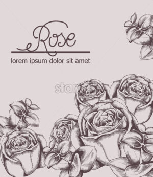 Vintage roses card Vector line art. Boho style posters. Pink color - starpik