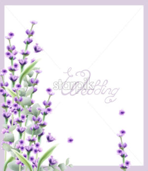 Wedding Lavender frame Vector watercolor card background - starpik