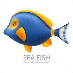 Blue Sea fish Vector realistic isolated on white. Detailed marine life fish - starpik
