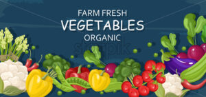Farm fresh vegetables Vector banner. Store shop grocery detailed illustrations poster - starpik