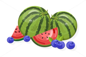 Fresh fruits Vector banner. Watermelon and berry isolated - starpik