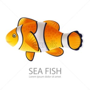Gold fish Vector realistic isolated on white. Detailed marine life fish - starpik