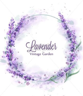 Lavender wreath Vector watercolor splash. Delicate floral bouquet frame. Spring summer banner template - starpik