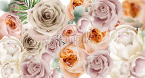 Roses watercolor Vector background. Delicate flowers pattern texture. Floral wedding decor background - starpik