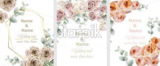 Wedding cards set with watercolor roses Vector. Vintage decor design frames, soft light color - starpik