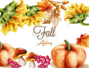 Autumn Fall card Vector watercolor. pumpkin, sunflower and mushrooms illustration - starpik