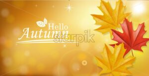 Autumn leaves falling Vector. Golden rays of sun. Blurry effect. Mystic atmosphere. Fall background decor - starpik