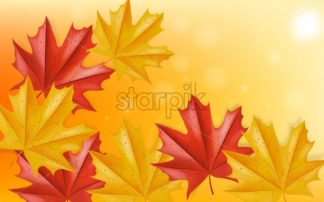 Autumn leaves falling Vector. Rays of sun. Blurry effect. Mystic atmosphere. Fall background decor - starpik