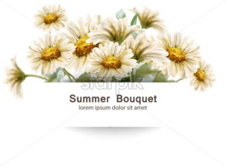 Daisy flowers bouquet Vector watercolor. Summer decor floral bouquets card poster - starpik