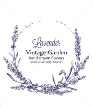 Lavender wreath Vector vintage line art. Provence floral decor hand drawn. Summer wedding ceremony delicate poster - starpik