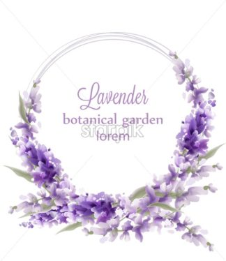 Lavender wreath card Vector watercolor. Flowers decor greeting. Vintage style bouquets and round decor. Provence wedding ceremony invitation - starpik
