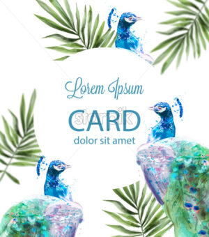 Peacock tropic background Vector watercolor. Summer exotic card - starpik