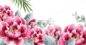 Peony flowers Vector watercolor. Delicate floral decor background - starpik