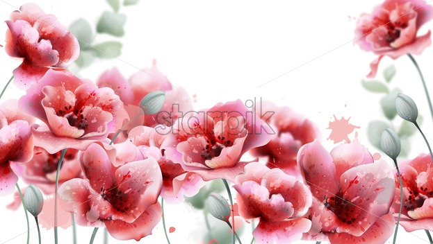 Poppy pink flowers background Vector watercolor. Summer floral decor frame