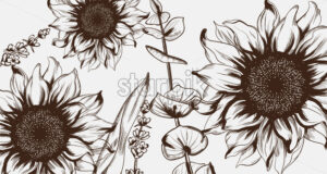 Sunflowers line art Vector. Hand drawn decor texture vintage style - starpik