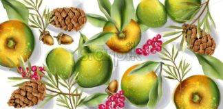 Autumn harvest pattern Vector watercolor. Fall apple fruits decor poster - starpik