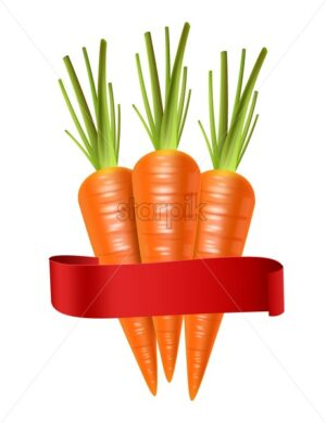 Carrots Vector realistic isolated on white 3d illustration - starpik
