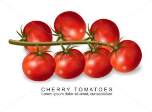 Cherry tomatoes vector realistic isolated on white 3d illustration - starpik