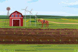 Farm fields Vector. Countryside Label layout template - starpik