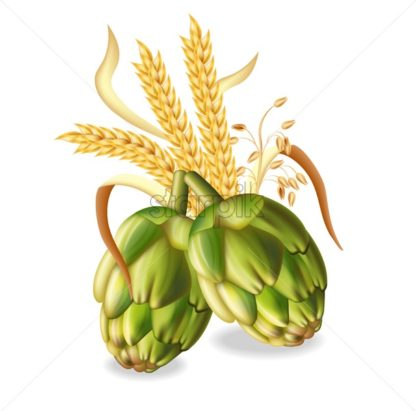 Hops and wheat ears Vector realistic. green fresh hops natural poster. 3d illustration - starpik