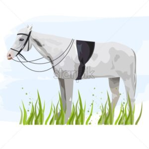Horse isolated Vector. Animal icon template poster - starpik