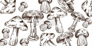 Mushrooms vector line art pattern. Autumn fall veggies background - starpik