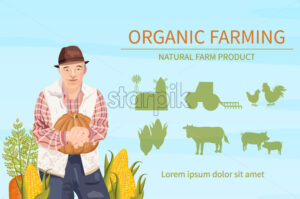 Old Farmer harvest Vector flat style. Organic agriculture template layout - starpik