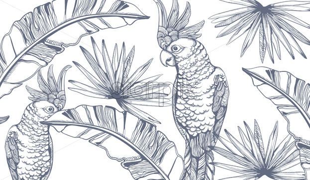 Parrot card Vector line art . Exotic palm leaves decors. Summer party background - starpik