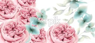 Peony flowers card Vector watercolor. Delicate pink floral decor - starpik