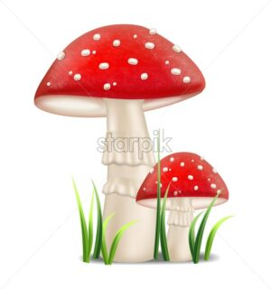 Red mushrooms vector realistic. Growing Detailed 3d illustration - starpik