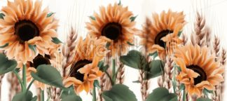 Sunflower watercolor background Vector. Vintage rustic style floral decor - starpik