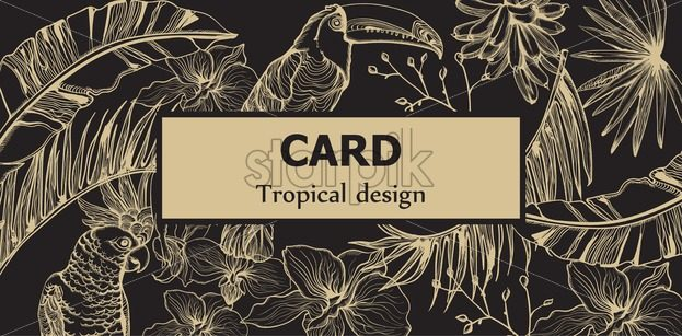 Tropic parrot card Vector line art . Exotic pattern leaves decors. Summer Party poster Dark background - starpik