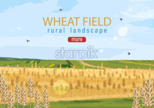 Wheat field Vector autumn hay harvesting poster - starpik