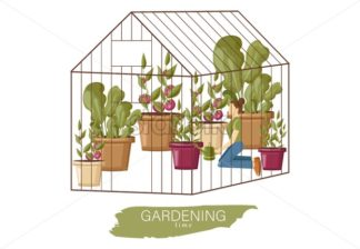 Woman working in the greenhouse Vector flat style. Growing plants and flowers. Cage garden concept - starpik