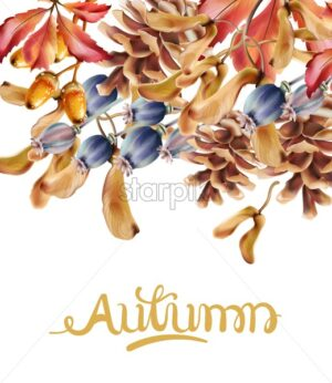 Autumn flowers bouquet card vector watercolor. Isolated background. Provence flowers banner - Starpik Stock