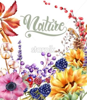 Autumn rose flowers bouquet card vector watercolor. Isolated background. Provence flowers banner - Starpik Stock