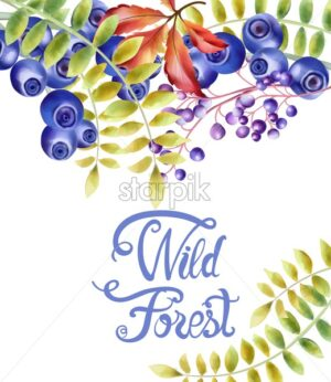 Autumn wild forest berries and flowers bouquet vector - Starpik Stock