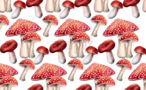 Composition of red mushrooms vector. Random size - Starpik Stock
