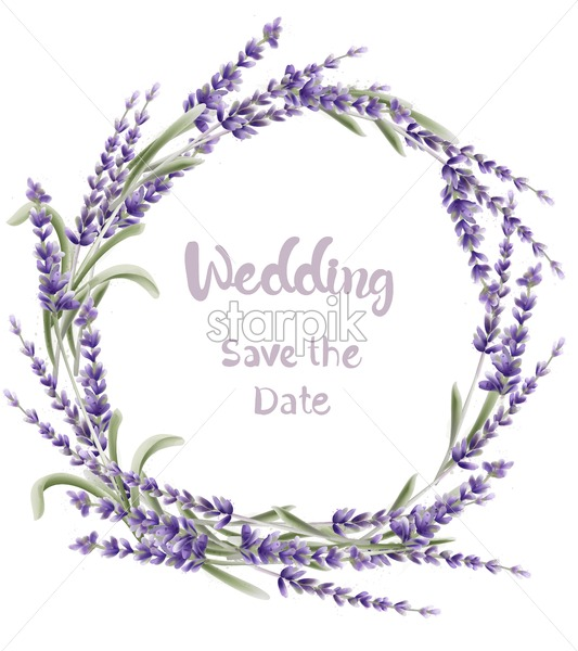 Lavender wreath wedding card vector watercolor. Isolated background. Provence flowers banner - Starpik Stock