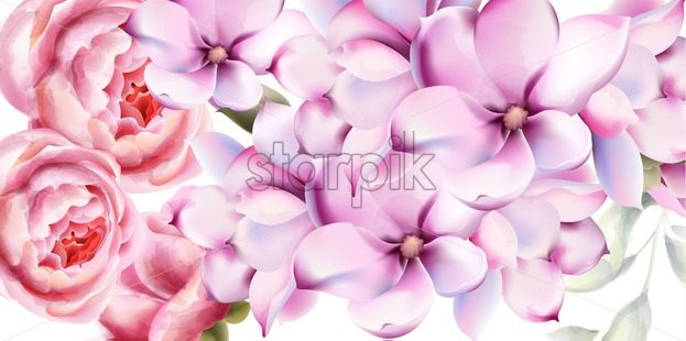 Rose and lilly flowers card vector watercolor. Isolated background. Provence flowers banner - Starpik Stock